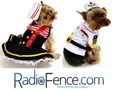 Get your dog's Halloween costume at RadioFence.com! http://www.radiofence.com/dog-costumes/
