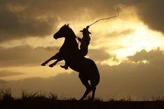 Kimberley Horse Whisperer, Dan James at sunrise on Liveringa station