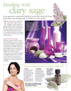 Young Living Essential Oils: Clary Sage by Sugarbean Clary Sage Essential Oil, Doterra Essential Oils, Essential Oil Blends, Young Living Oils, Young Living Essential Oils, Mind Body Spirit, Aromatherapy Oils, Oil Benefits, Healing Herbs