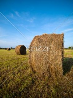 hay bale in field with sky in the background. - View of a hay bale in field with sky in the background.