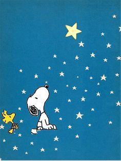 Snoopy and Woodstock Looking Upward at the Stars