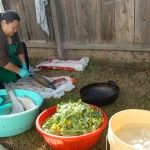 Behind the scenes at a traditional Hmong feast in rural Merced in California. Asian Recipes, New Recipes, Ethnic Recipes, Road Trip Across America, Road Trip Food, United States, California, Traditional, Cooking