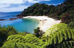 Pacific Beach, Whangarei, The North Island, New Zealand