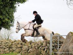 Blue Joey hunting Dec 2019. #loveirishhorses #horsesinireland #horseforsale Horses For Sale, Cob, Ireland, Hunting, Blue, Animals, Animales, Animaux, Irish
