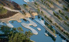 In The Australian Garden i progettisti s'ispirano esclusivamente al contesto locale :la biodiversità australiana