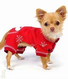 filhotes-cachorros-pijamas (25)