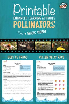 These fun and interesting educational activities will get your classroom thinking AND CARING about pollinators. K-5 grade. FREE! Includes: Pollen Relay Race (Grades K-5), Bees vs. Frogs (Grades K-5)