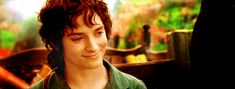 Cuteness in one gif. Yes, it's an animation. An animation of Frodo smiling. What more do you need?
