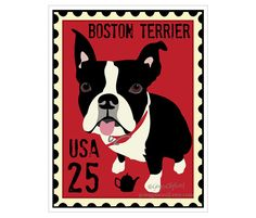 Boston Terrier U.S. Postage Stamp