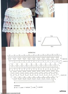 No Pattern (Pic Graph). Crocheted Shawl.