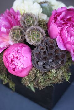 85 best lotus leaf and pod uses images on pinterest in 2018 seed dried lotus pod peonies hydrangea scabiosa pods poppy pods moss centerpiece mightylinksfo