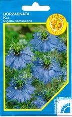 Borzaskata Nigella, Bud, Herbs, Flowers, Herb, Royal Icing Flowers, Flower, Gem, Florals