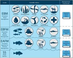 .@NOAAFisheries demystifies ecosystem-based #fisheries management: http://1.usa.gov/1e5IZQe