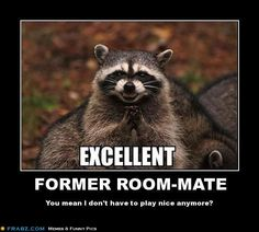Room-mate meme