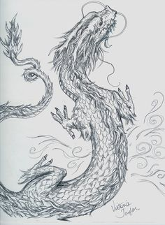 Chinese_Dragon_sketch_by_DragonSpark.jpg (765×1044)
