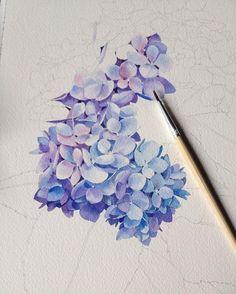 Water color lilacs