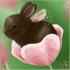 ✧Ꮆifs-Pictures in Motioŋ✧ Bunny Art, Cute Bunny, Cute Animal Drawings, Cute Drawings, Animal Pictures, Cute Pictures, Rabbit Art, Animation, Cute Little Animals