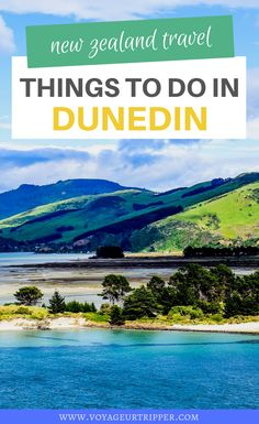 13 Things to do in Dunedin, New Zealand. Here's your expat's guide to planning a Dunedin vacation. I things to do in New Zealand I New Zealand travel I what to do in Dunedin I where to go in New Zealand I places to go in New Zealand I Dunedin travel I New Zealand destinations I destinations in New Zealand I New Zealand adventures I outdoor adventures in New Zealand I New Zealand outdoor adventures I places to go in Dunedin I #NewZealand
