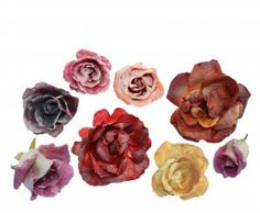 Fresh Origins Micro-greens Crystallized Rose  Crystallized Rose Spectacular selection of soft colors including peach, lavender, pink, red, yellow, orange, and purple. This stunning Crystallized Flower will add a sophisticated touch to wedding cakes, tortes, specialty brownies and more. Float these edible roses  in raspberry champagne! Create an upscale fruit and cheese plate.