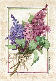 Phlox Bouquet by Sandi Gore Evans. Art Vintage, Decoupage Vintage, Decoupage Paper, Vintage Cards, Vintage Paper, Vintage Postcards, Vintage Images, Vintage Prints, Art Floral