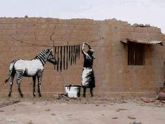 Washing the zebra on the wall is like walking the dog on your yo yo. DRY STRIPES  By the famous Banksy (... pseudonym of an English graffiti artist)