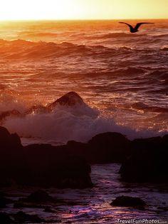 Beach at Big Sur, California – USA