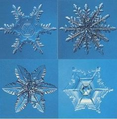 No two snowflakes are exactly alike.