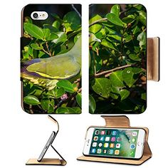 MSD Premium Apple iPhone 7 Flip Pu Leather Wallet Case iPhone7 IMAGE 35378920 Female Pink necked Green Pigeon Treron vernans on the branch in nature in Thailand *** See this great product.