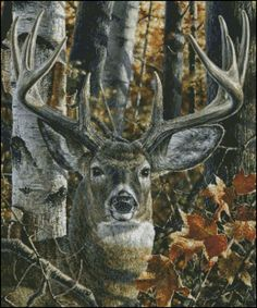 Abraham Joseph Hunter from Vienna, Illinois won the 2009 NRA Youth Wildlife Art Contest best in show. Deer Photos, Deer Pictures, Pictures To Paint, Elk Silhouette, Mini Mundo, Deer Crossing, Hunting Art, Deer Hunting, Spiritual Animal