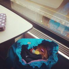 Escondiendo a Bolita en la mochila porque no ha pagado billete y no queremos problemas con el revisor #trains #trenes #softtoys #peluches #pelucheando