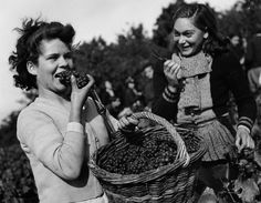Robert Doisneau // Wine - Vendanges a Vouvray, Septembre, 1946.