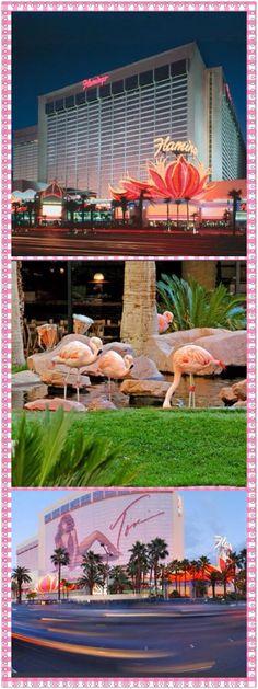 The Flamingo - Las Vegas