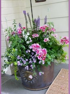 Wunderbar Keine Kosten bepflanzung balkonkasten Strategien , It is so so important to have a beautiful and inviting floor door entrance, because if it is well decorated, it creates interest among your guests and . Front Porch Flowers, Planters For Front Porch, Front Porches, Plants For Porch, Outdoor Flower Planters, Potted Plants Patio, Outdoor Pots, Outdoor Flowers, Container Flowers
