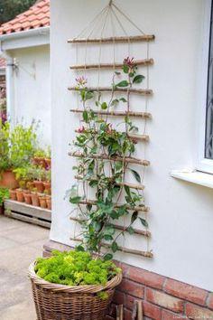 Pour guider vos plantes grimpantes tout en décorant les murs, fabriquez un trei… To guide your climbing plants while decorating the walls, make a trellis with wooden rods.
