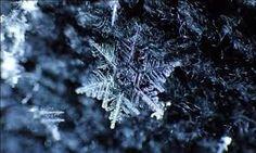 Kết quả hình ảnh cho tuyết