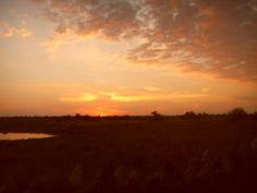 Sun set Colours, Celestial, Sunset, Park, Outdoor, Cape Town, Sunsets, Outdoors, Parks