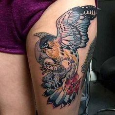 Lovely hawk.