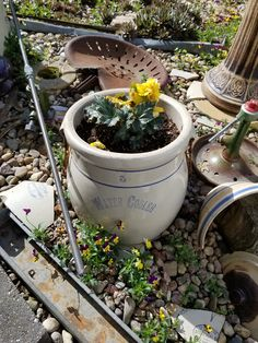 Red Wing Stoneware, Repurposing, Sheds, Crock, Primitive, Planter Pots, Yard, Plants, Tool Sheds