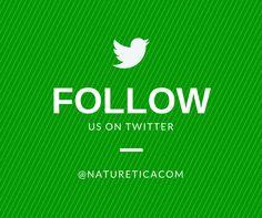 FOLLOW US ON TWITTER @natureticacom