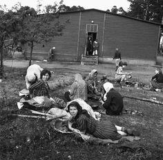 Bramy piekielne: Wyzwolenie obozu Bergen-Belsen w kwietniu 1945
