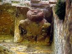 The Sheela na Gig Pool