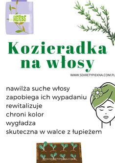 Kozieradka to mało znany ale NIEWYKLE SKUTECZNY sposób na piękne i zdrowe włosy! Efekty zobaczysz we wpisie :) Beauty Makeup, Hair Beauty, Home Spa, Glowing Skin, Beauty Hacks, Self, Hair Cuts, Health, Tips