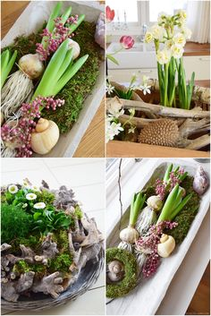 Dekoideen für den Frühling Frühjahr. DIY mit Narzissen, Tulpen, Hyazinthen. Deko mit Natur selber machen. Natürlich dekorieren