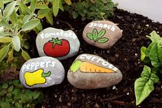 DIY painted stone pant markers for your vegetable garden. Also, these make a great homemade holiday gift!