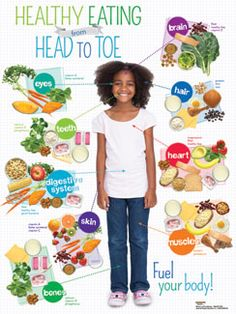Health Nutrition for Kids: USDA MyPlate, Child Nutrition, Nutrition Education, Kids Health EducationKids Healthy Eating from Head to Toe Spanish Poster Nutrition Education, Sport Nutrition, Nutrition Classes, Nutrition Activities, Nutrition Tips, Healthy Foods To Eat, Health And Nutrition, Healthy Recipes, Nutrition Tracker