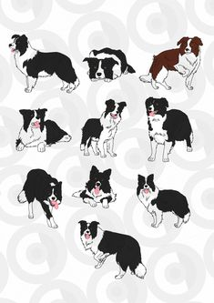 Clipartopolis.com - Digitizer's Heaven Animal Drawings, Cute Drawings, Animals And Pets, Cute Animals, Border Collie Art, Animal Silhouette, Dog Illustration, Collie Dog, Australian Shepherd