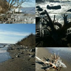 Driftwood gathering on a cold winter's day! www.driftingconcepts.com