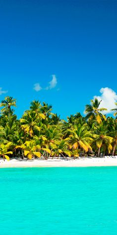 The beautiful Saona Island in Dominican Republic #Paradise clearest and prettiest water ever