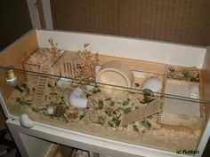Homemade Hamster cage by Flutteri