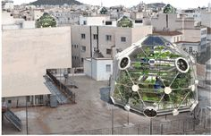 """""""A Geodesic Dome Promises Fish from the Sky: --- Rooftop Aquaculture for apartment buildings"""
